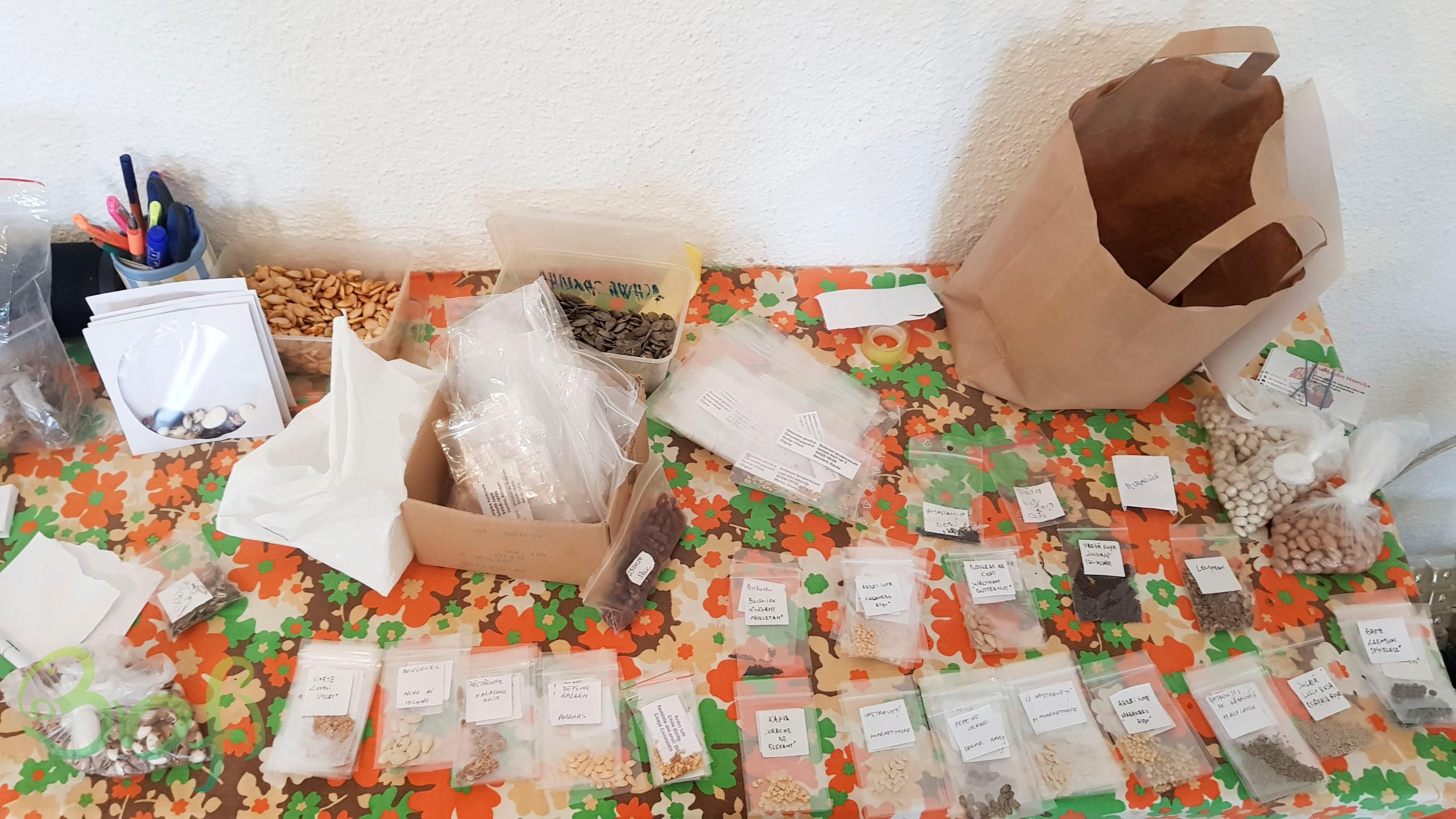 Semințe Libere – 2020 – Suceava și Rădăuți